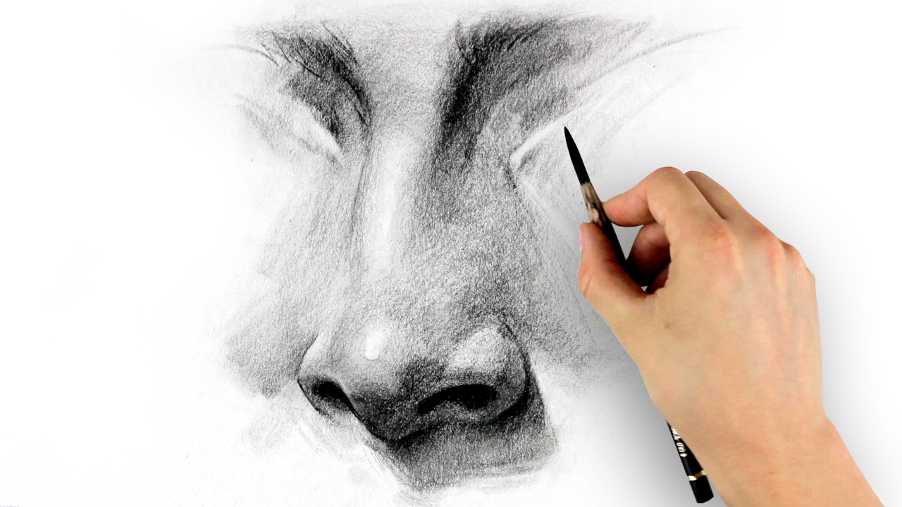How To Draw A Nose For Beginners With These Tutorials That Will