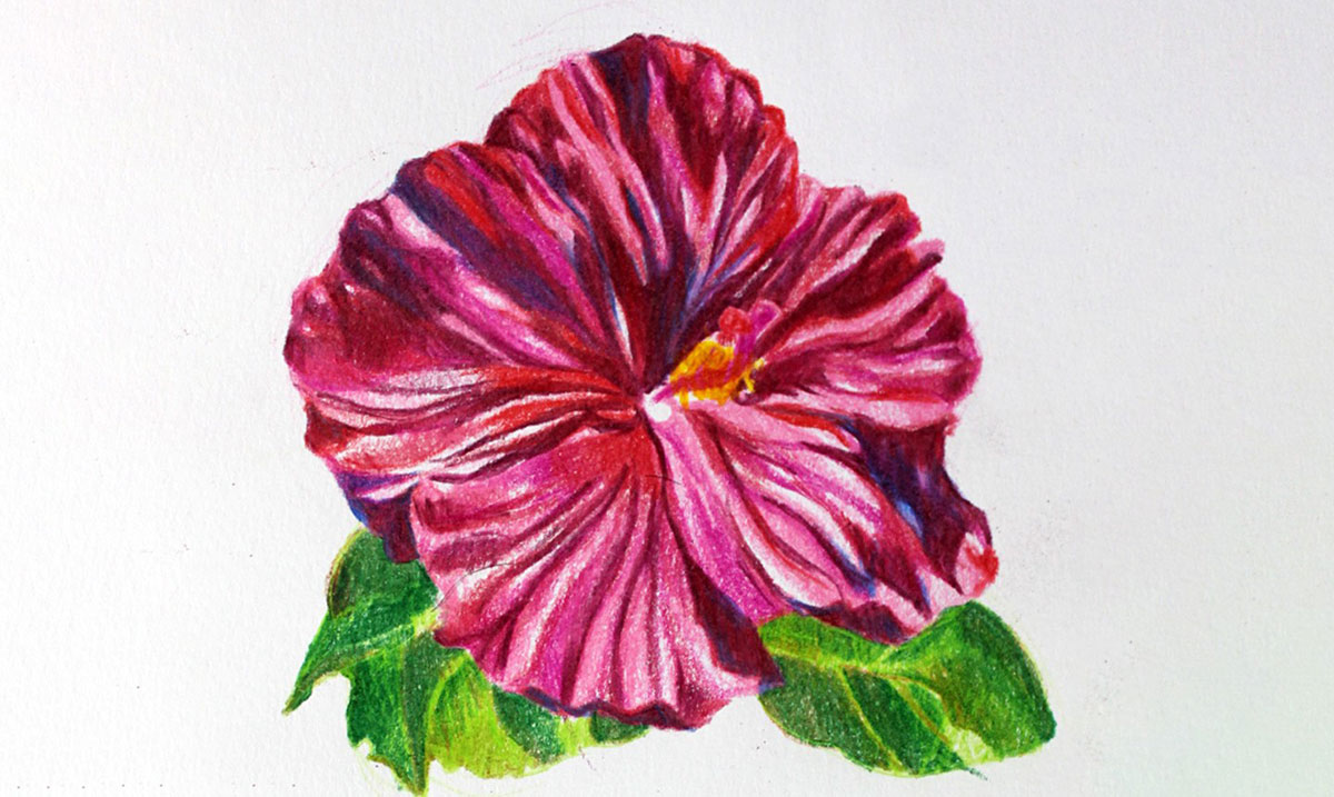 How To Draw A Flower With These Easy Step By Step Tutorials For Kids