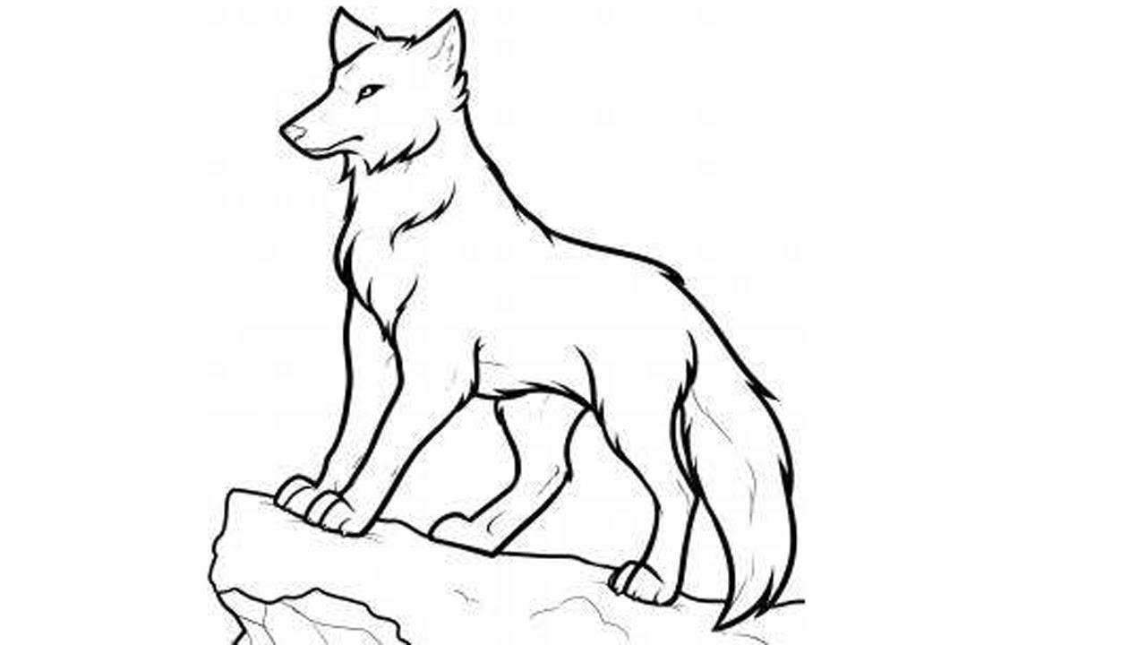 картинка красного волка карандашом поэтапно ставит сам