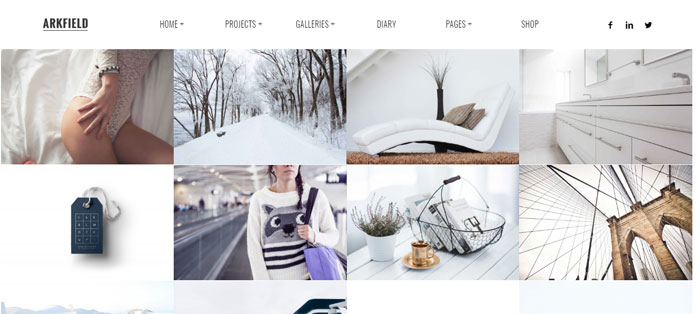 ARKFIELD Architecture WordPress Themes To Design An Architect's Website
