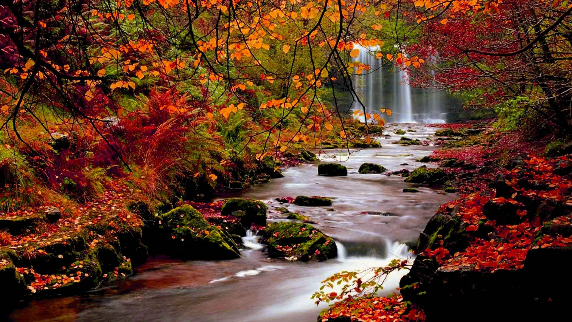 Autumn Wallpaper Examples For Your Desktop Background Web Development Designing