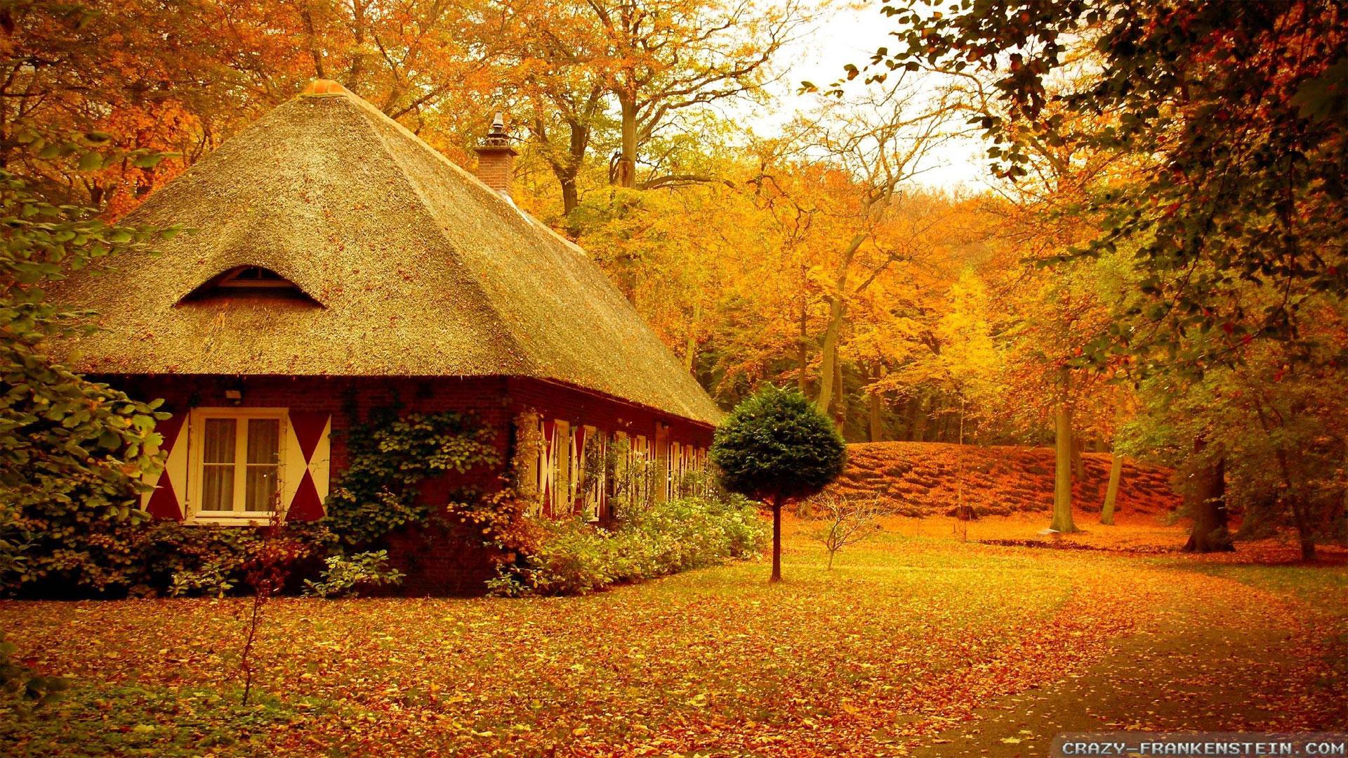 autumn scene wallpapers 54 autumn wallpaper examples for your desktop background