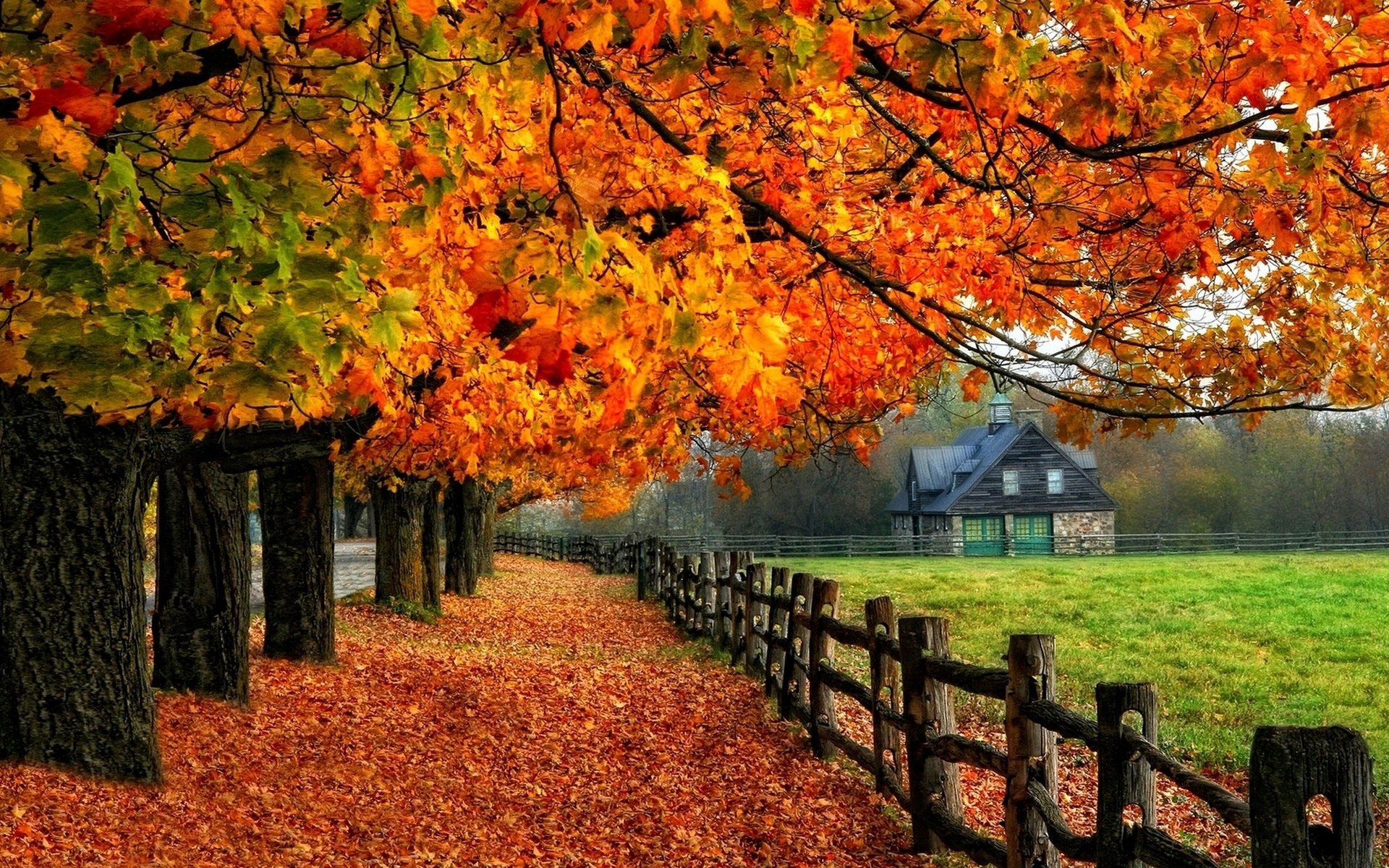 Autumn Fall Tree House Fenc Wallpaper Examples For Your Desktop Background