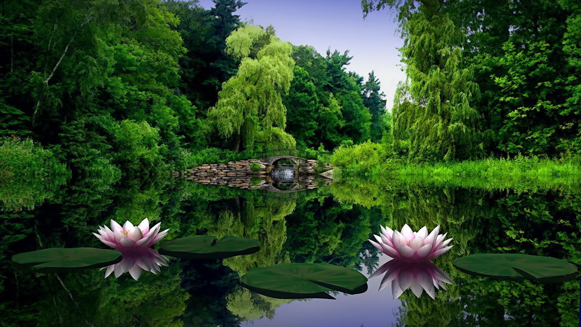 Wallpaper-amazing-lotus-lake-mac-pictures-tablet-1920x1080 101
