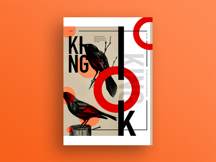 King Book Cover Design: Ideas, Layout, Fonts, And How To Create One
