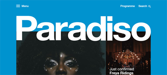 Paradiso Web Design Basics: What Makes A Good Website