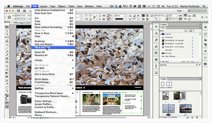 adobe indesign is an example of this kind of software