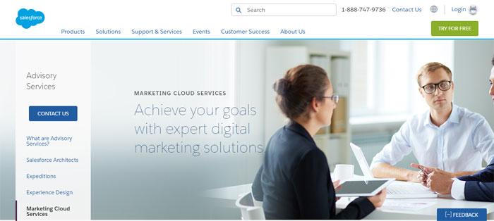 salesforce.com_servic Creating B2B Websites: Tips and showcase of B2B website design