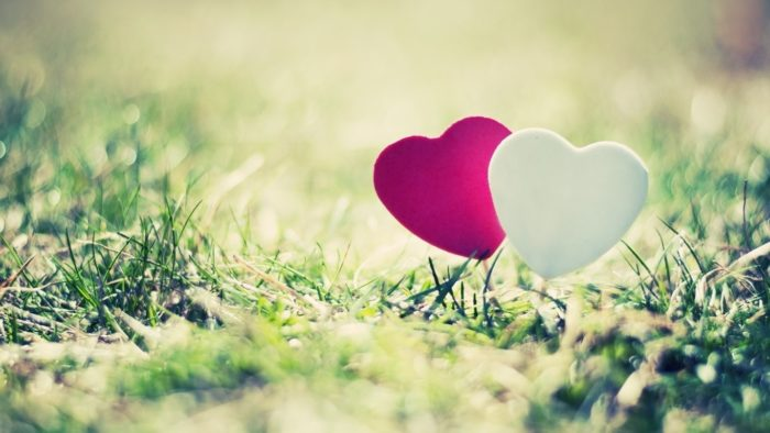 cute wallpapers to download for your desktop background cute wallpapers to download for your