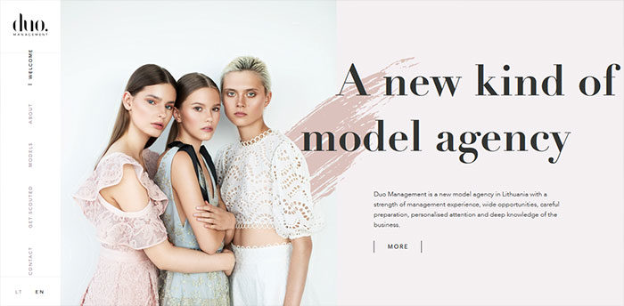 fashion-14-700x344 Website design inspiration: business websites, one-page, parallax sites, and more
