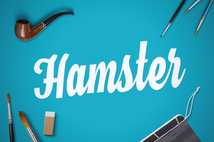 hamster-700x467 Free Cute Fonts to Use in Your Thematic Designs