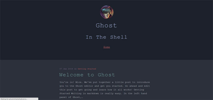 Shell Ghost template examples and themes, you should check out