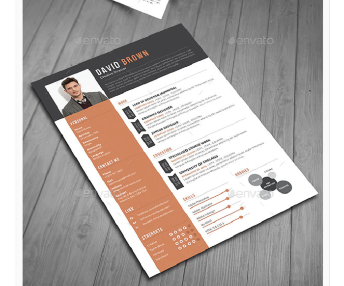 s1-117 InDesign resume template examples that look absolutely great