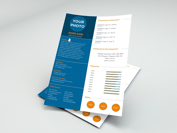 s1-384 InDesign resume template examples that look absolutely great