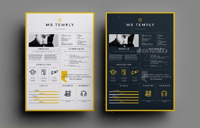 s1-385 InDesign resume template examples that look absolutely great