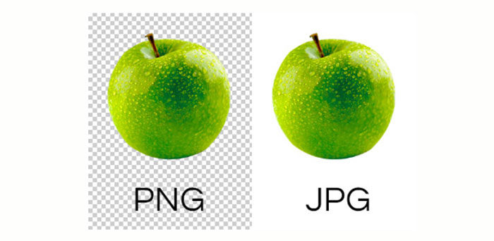 What's the difference between PNG vs JPG and which is better | LaptrinhX