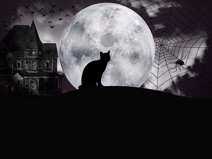 Halloween Wallpaper Examples Scary Cool Desktop Backgrounds