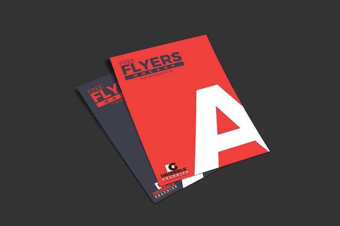 t1-9 Cool flyer mockup examples you should check out today