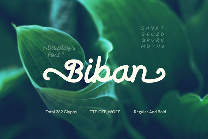 Biban-Font Awesome artistic fonts that you can quickly download for your projects