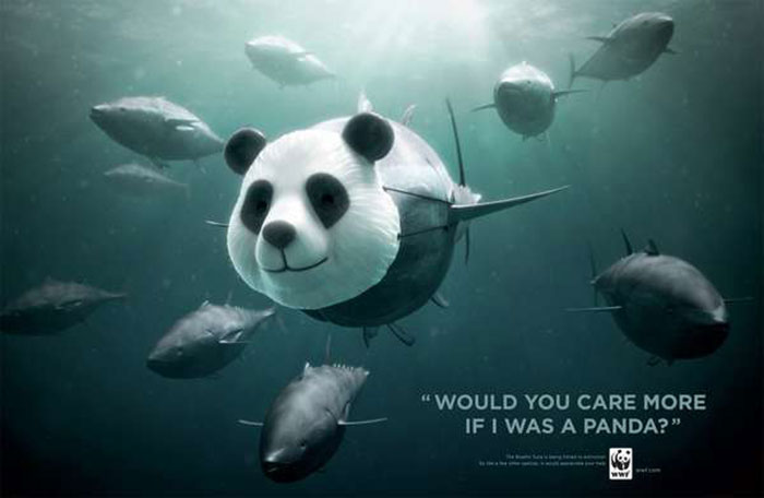 fish-campaign Creative WWF ads that will surprise you with their message