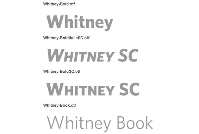 whitney-1 Gotham options d'association de polices que vous devez connaître