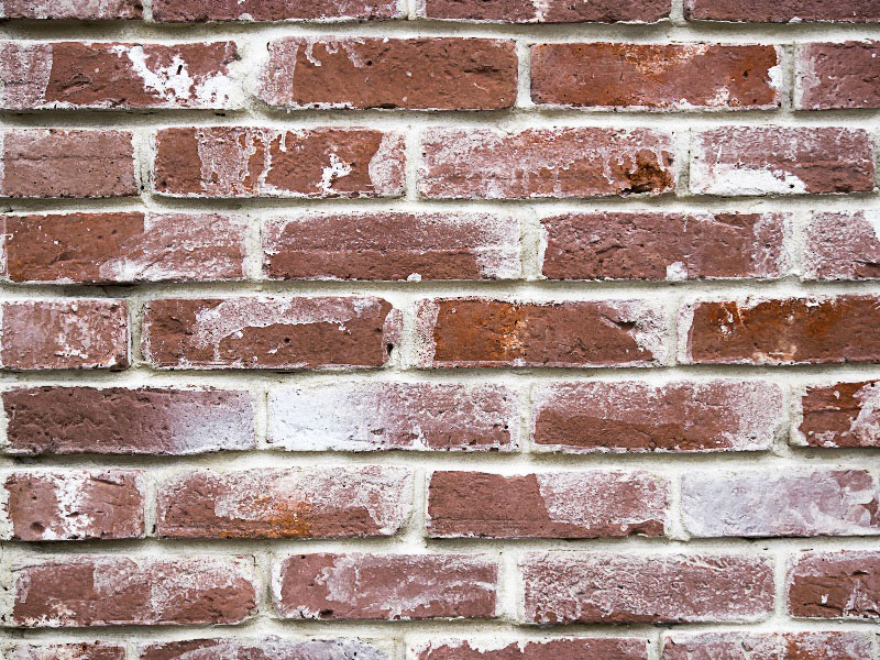 1High-Resolution-Bricks-Texture-Weathered-paint Download a free brick wall background image now