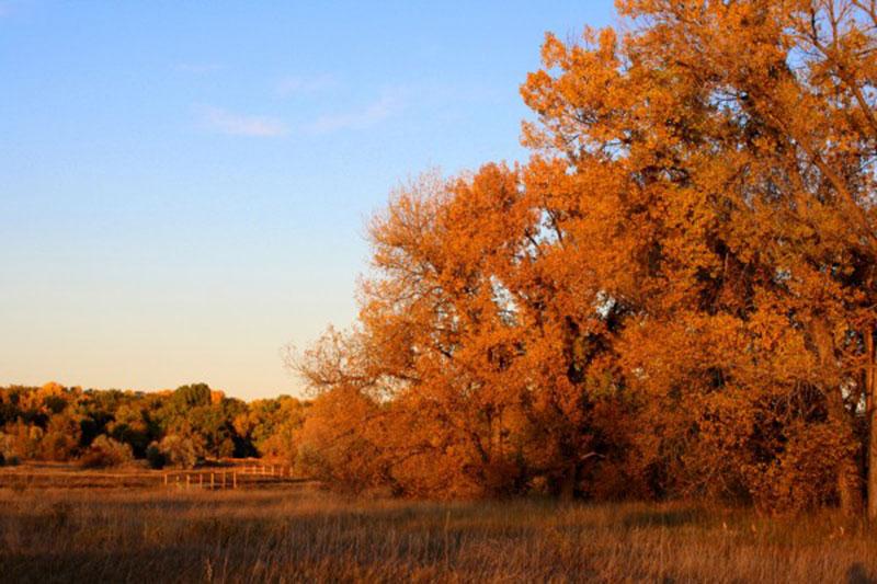 Beautiful-Autumn-Day-Background Téléchargez ces belles textures de fond dès maintenant