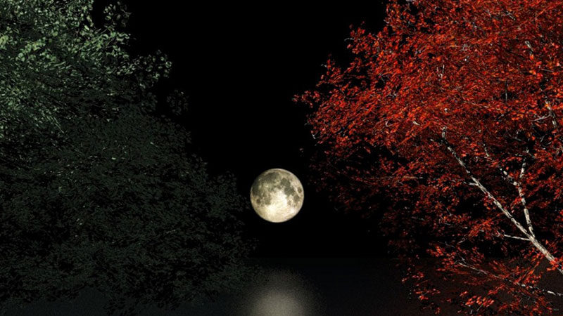 Amazing Moon Wallpaper Images To Add To Your Desktop Background