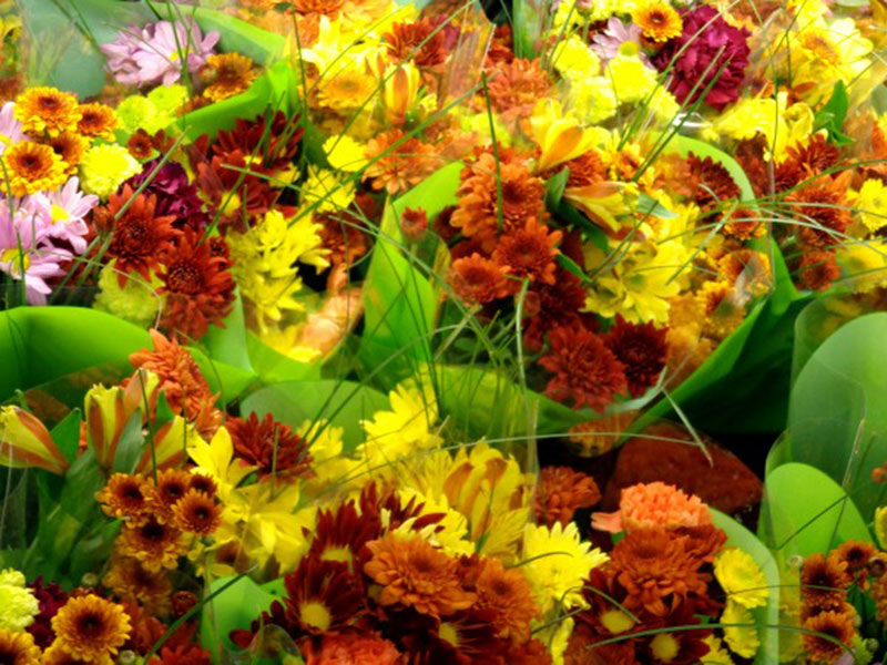 Fall-Floral-Bouquets-Texture-autumn-flowers Fall background images to use in your projects