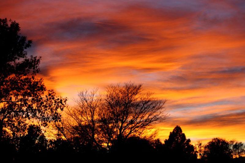 Orange-Sunset-with-Trees-The-melancholy-of-the-sunset Téléchargez ces belles textures de fond dès maintenant