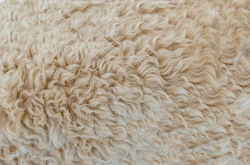 bg18 Téléchargez ces belles textures de fond dès maintenant