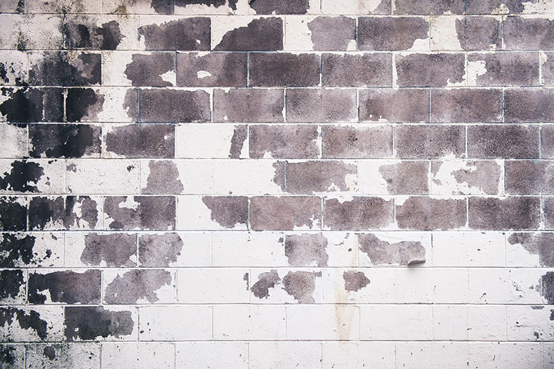brick17 Download a free brick wall background image now