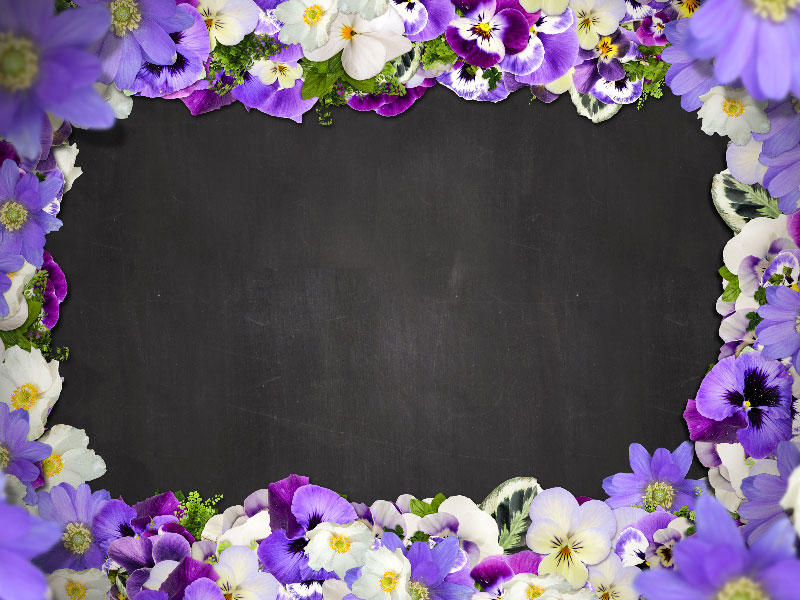 1Beautiful-Floral-Border-With-Purple-Flowers-Free-Background-A-frame-to-present-your-projects A great deal of spring background images to download