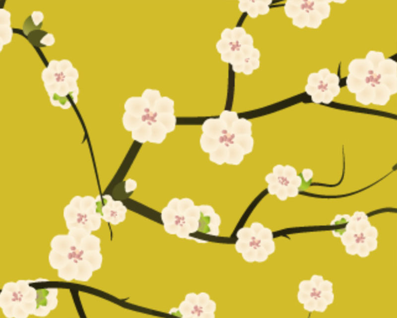 First-Spring-Blossoms-Various-perspectives-of-early-spring A great deal of spring background images to download