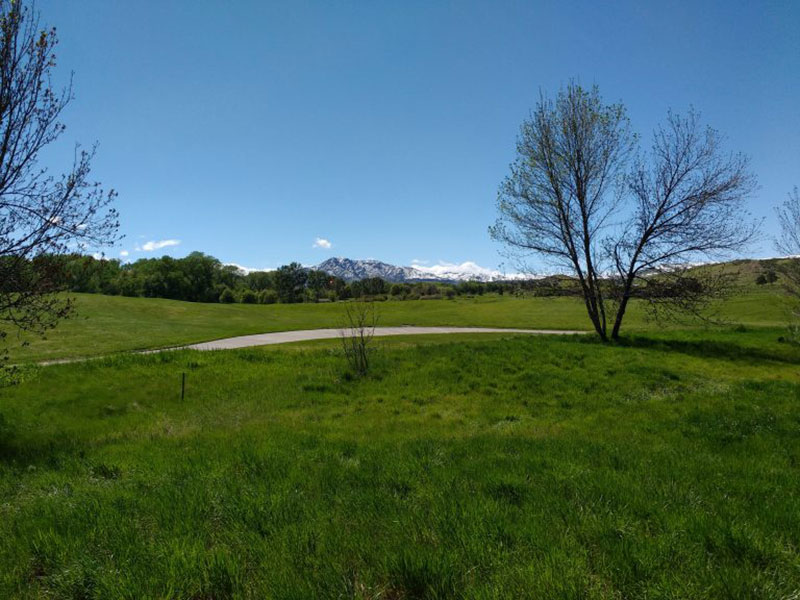 Landscape-of-Green-Hills-with-Snow-Covered-Mountains-Much-more-than-flowers A great deal of spring background images to download