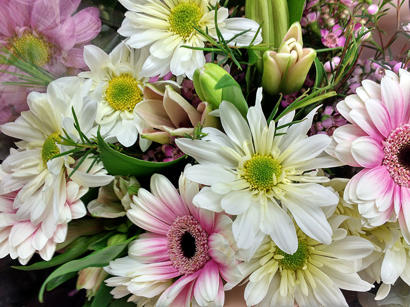 Spring-Flowers-Bouquet-Close-up-Beautiful-bouquet A great deal of spring background images to download