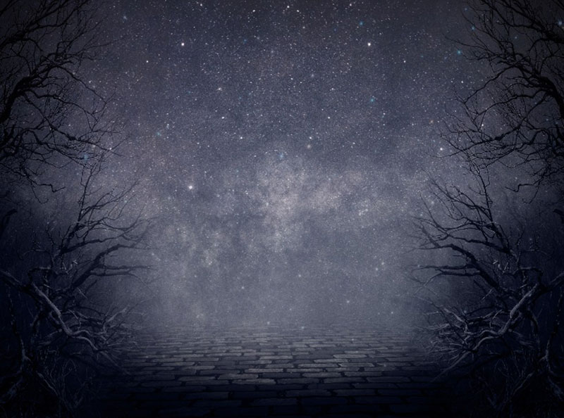 Creepy-Night-Forest-Fantasy-Background-Free-A-creepy-night Neat stars background images for stellar designs