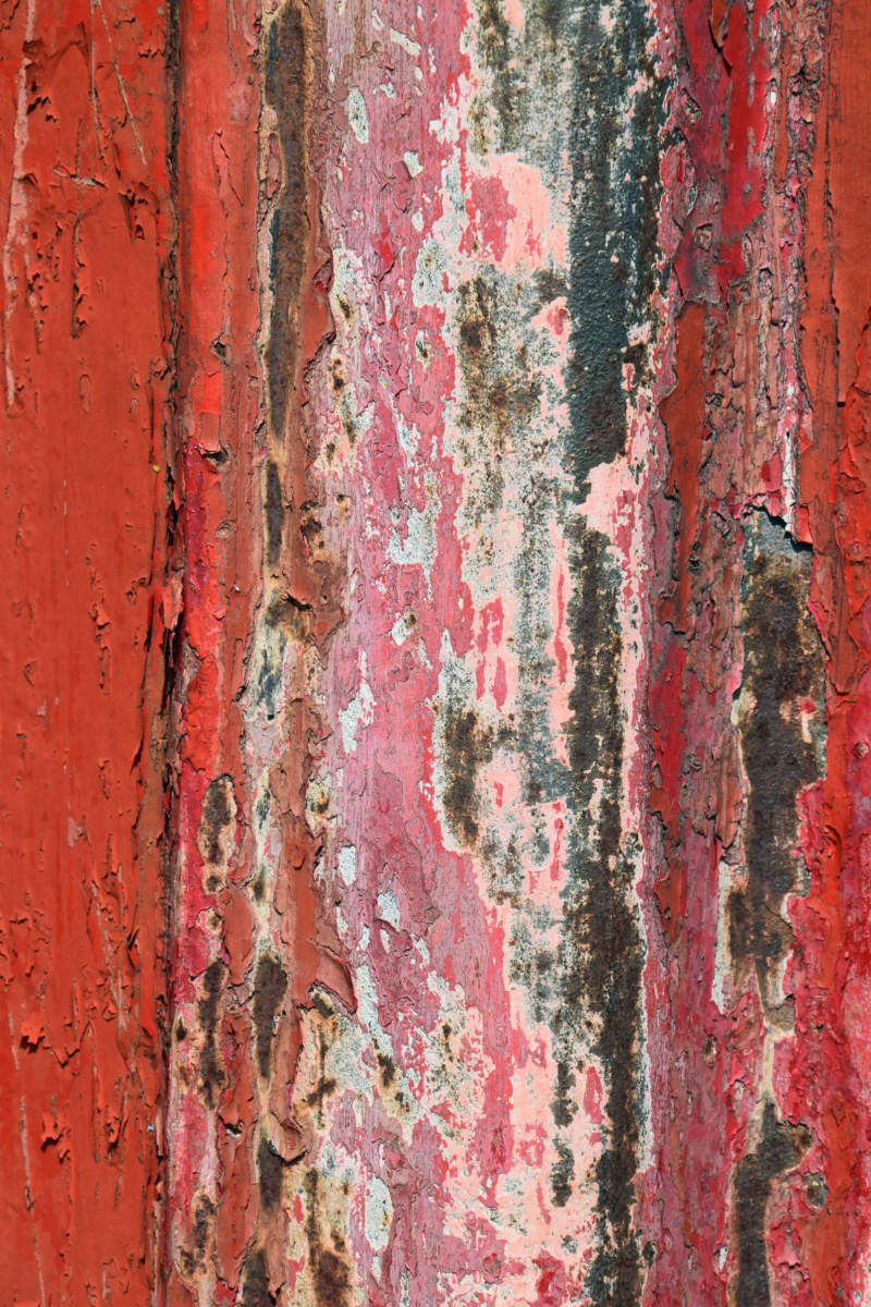 ru11-800x1200 Rustic background images to download for your designs