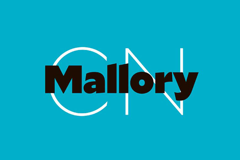 Mallory The Roblox font: What font does Roblox use?