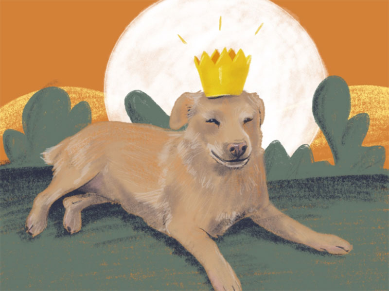 Dog-with-crown Awesome dog illustration images to inspire you