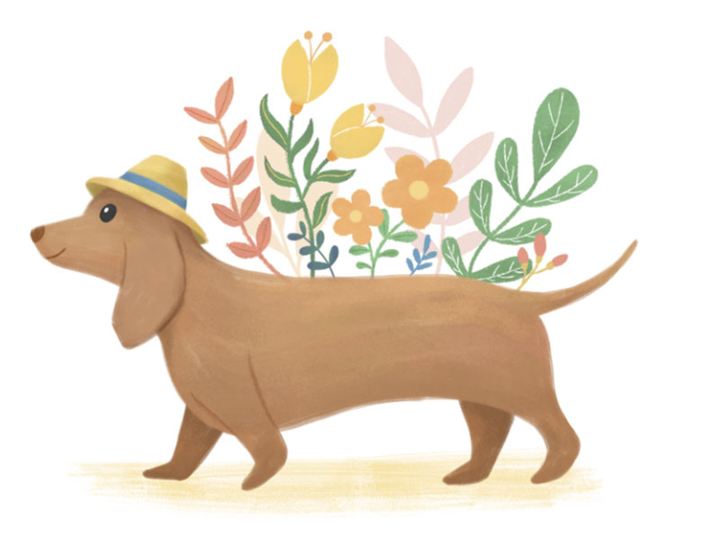 Doggie-_-florals Awesome dog illustration images to inspire you