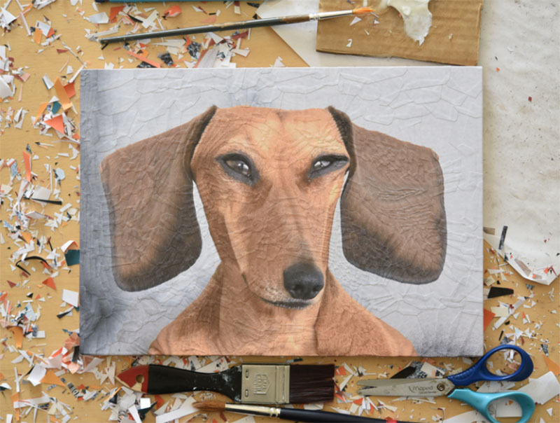 George-the-Sausage-studio Awesome dog illustration images to inspire you