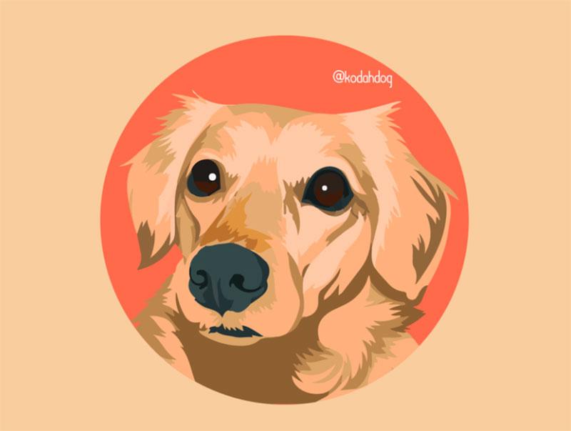 My-little-dog-Kodah-Hi-Dribbble Awesome dog illustration images to inspire you