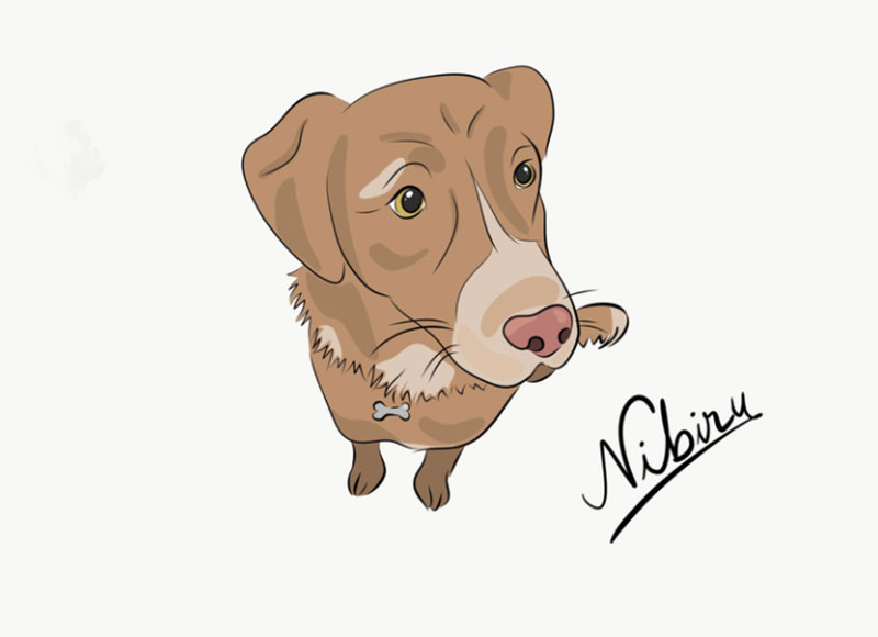 Nibiru Awesome dog illustration images to inspire you