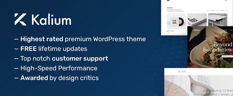 3-1 9 principaux thèmes WordPress polyvalents qui valent la peine d'être achetés