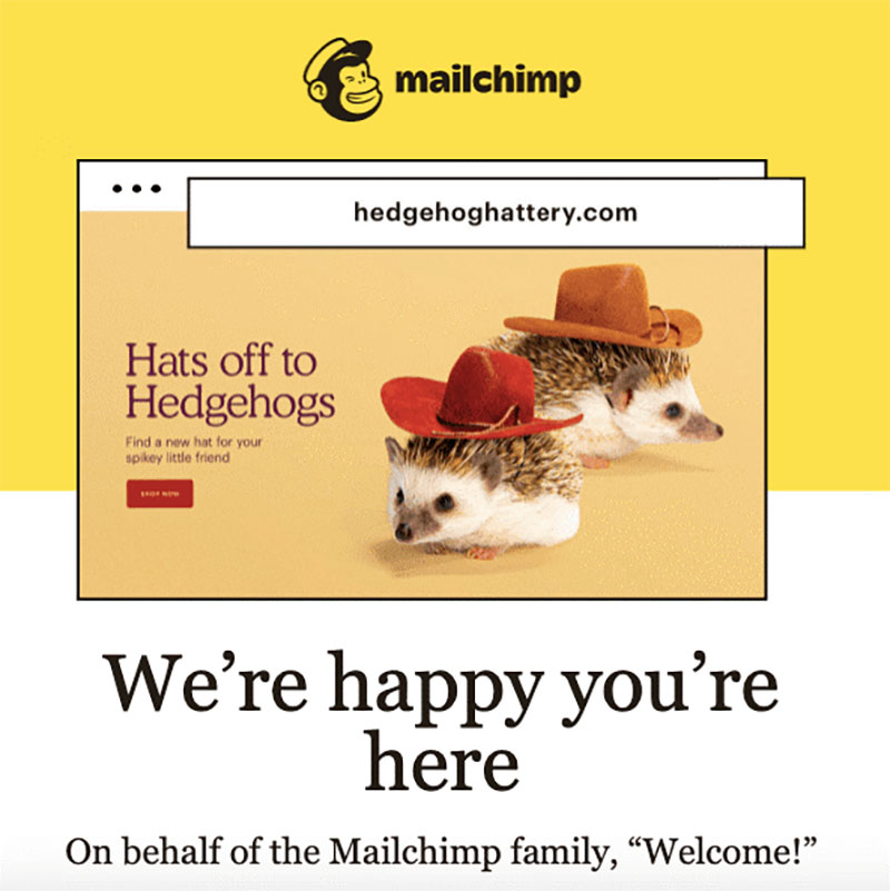 m Top 10 examples of welcome email for SaaS companies