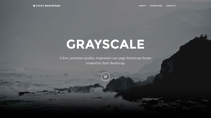 Grayscale Free Responsive HTML Template
