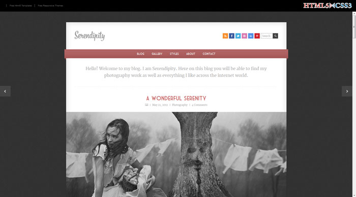 Serendipity Free Responsive HTML Template