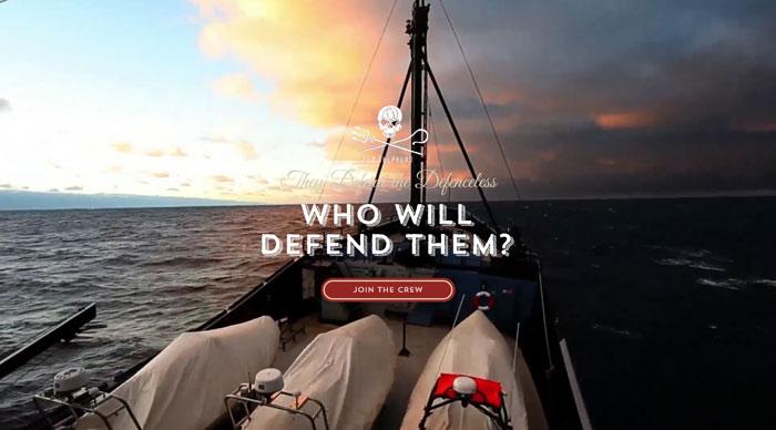 defend.seashepherd.org.au Typography based website design