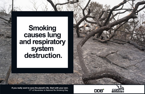 Smoking causes lung and respiratory system destruction Print Advertisement